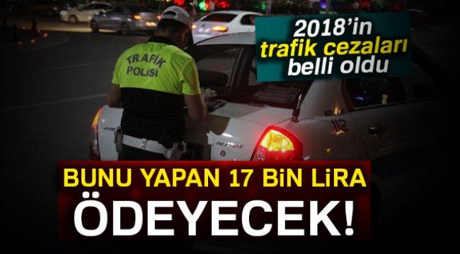 2018 yılında trafik cezaları ne kadar olacak? İşte 2018'in zamlı trafik cezaları..