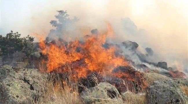 Aksaray'da orman yangını 8 saatte kontrol altına alınabildi