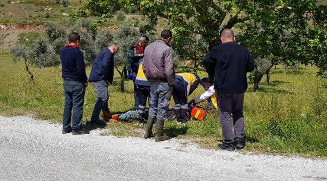 Çoban yol kenarında ölü bulundu