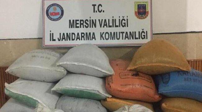 25 bin lira değerinde 1,5 ton kuru üzümü çaldılar