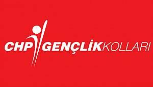 CHP İstanbul Gençlik Kolları'nda kongre heyecanı! İşte İlçe İlçe kongre takvimi