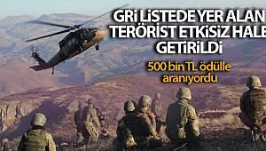 İçişleri Bakanlığı: Biri gri listede 2 terörist etkisiz hale getirildi