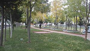 """Yeşil Odaklı Belediyecilik"" Anlayışı İle Kartal'da Yeşil Alan Sayısı Artıyor"