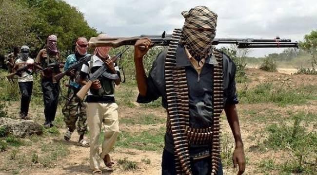 Nijerya'da Yüzlerce Kız Öğrenci Kaçırıldı